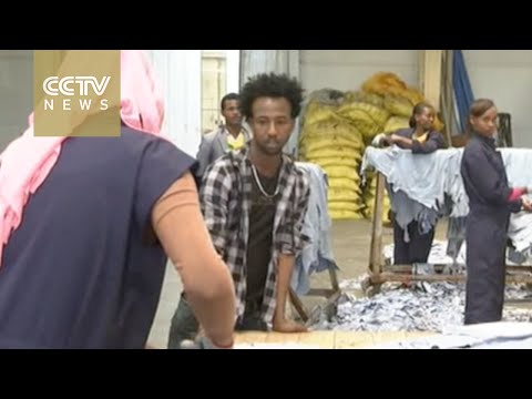 Chinese company brings Ethiopia's leather industry to life