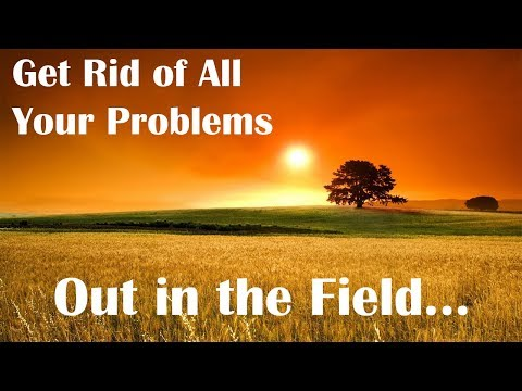 Got Problems? Go Out To The Field And Do Something About Them.