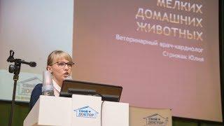 Конференция 2017.09.20 Доклад Стрижак Юлии Владимировны