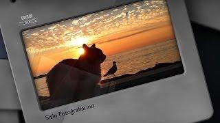 Sizin Fotoğraflarınız - Deniz - BBC Türkçe