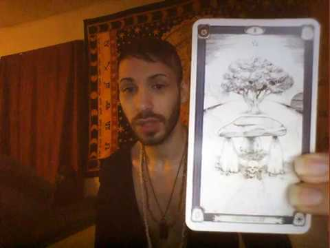 Donald Trump's America ~ The Tarot Reading by Hekterios