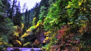Music For Yoga Free Download