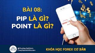Bài 8: Pip là gì - Point là gì trong Forex Ngoại Hối ? Khóa Học Đầu Tư Forex Cơ Bản