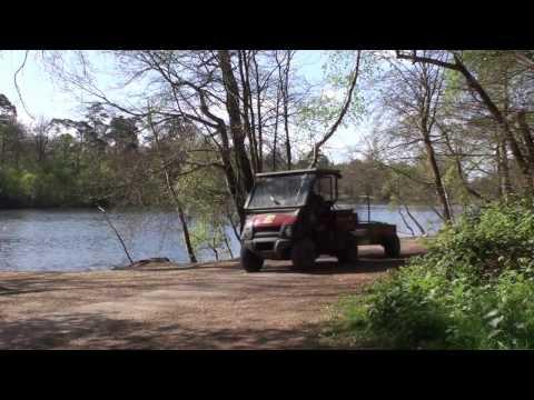 Black Park Country Park Buckinghamshire