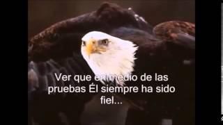 Video Karaoke Vuela Águila - Pista - Instrumental
