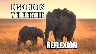 REFLEXION -LOS TRES CIEGOS Y EL ELEFANTE. Reflexiones Diarias, Pensamientos Positivos, Mejor Persona
