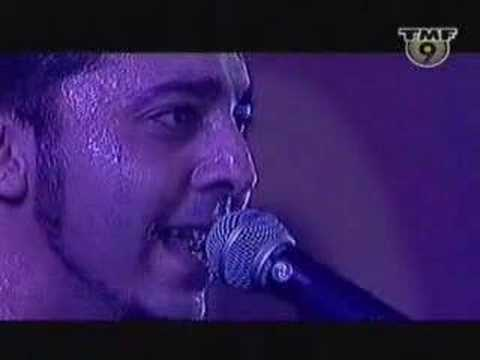 System of a down - (Daron Malakian) live performance