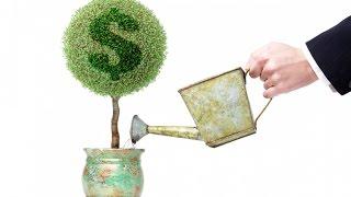видео ТОП 5 — куда инвестировать деньги грамотно