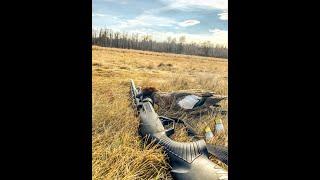 Весенняя охота на уток в Якутии 2020 год