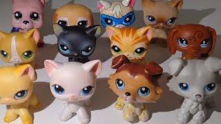 LPS: Все мои редкие петы: стоячки, колли, супер кот, дог..