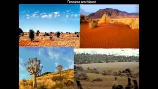253  Природные зоны Африки