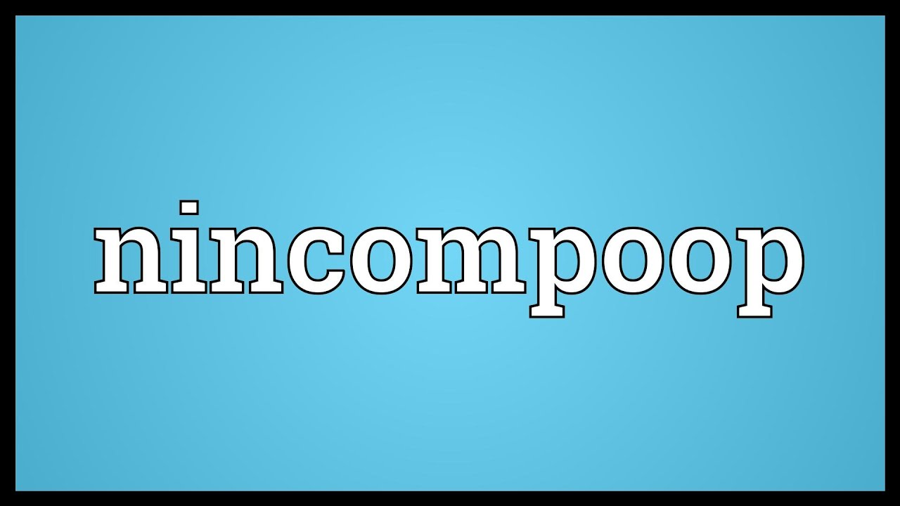 Image result for nincompoop images