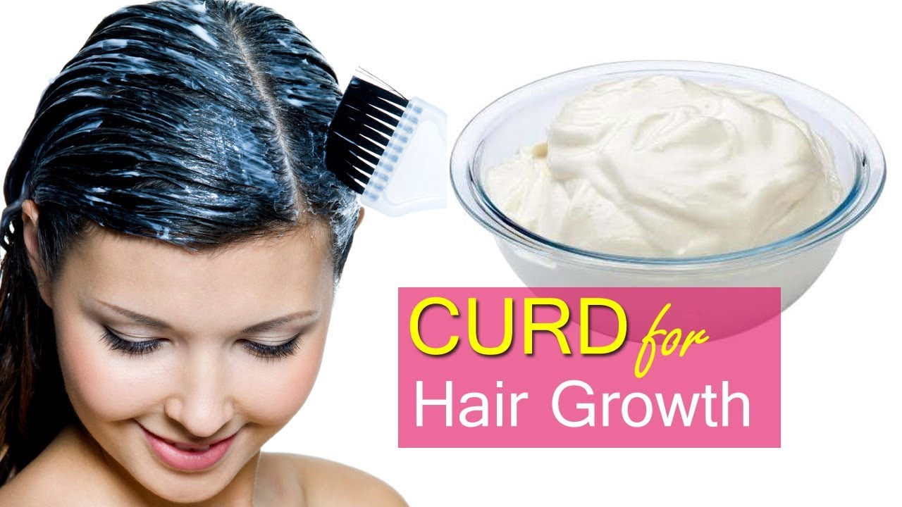 How to use curd for hair fall control and dandruff – Yogurt to stop hair fall