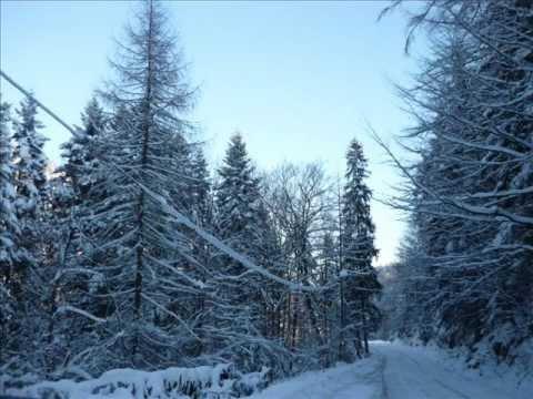 POLISH WINTER (South of Poland) SNOW