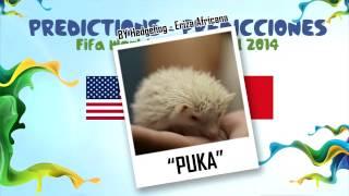 """""""PUKA"""" (Erizon Cavani) la Eriza predice el partido EE.UU. vs PORTUGAL 2014 MUNDIAL DE FUTBOL"""