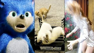 Ozzy Man Reviews: WTF HAPPENED IN 2019