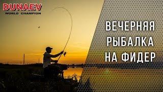 Ловля на фидер. Вечерняя рыбалка с Владимиром Павлищевым