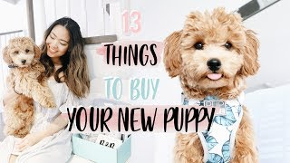 13 THINGS TO GET YOUR NEW PUPPY! | TRISH REYES