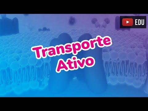 TRANSPORTE ATIVO - Prof. Paulo Jubilut