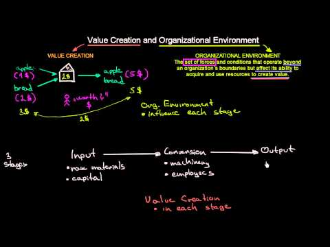 Value Creation and Organizational Environment | Introduction To Organisations | MeanThat