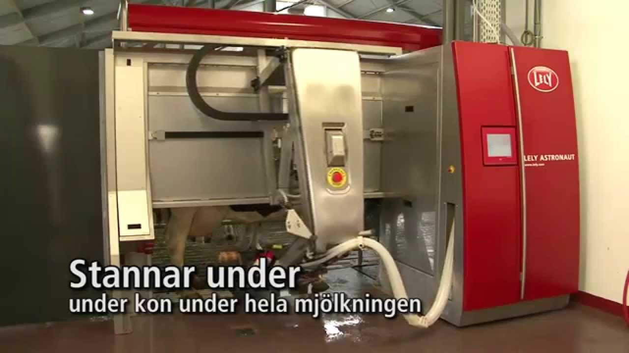 Lely Astronaut A4 - Milking robot arm (Swedish)