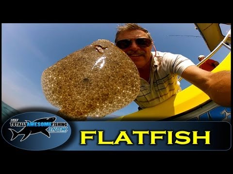 How to catch Flatfish on bait - Totally Awesome Fishing Show