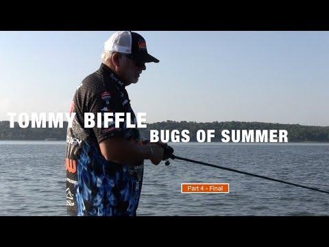 Tommy Biffle Bugs