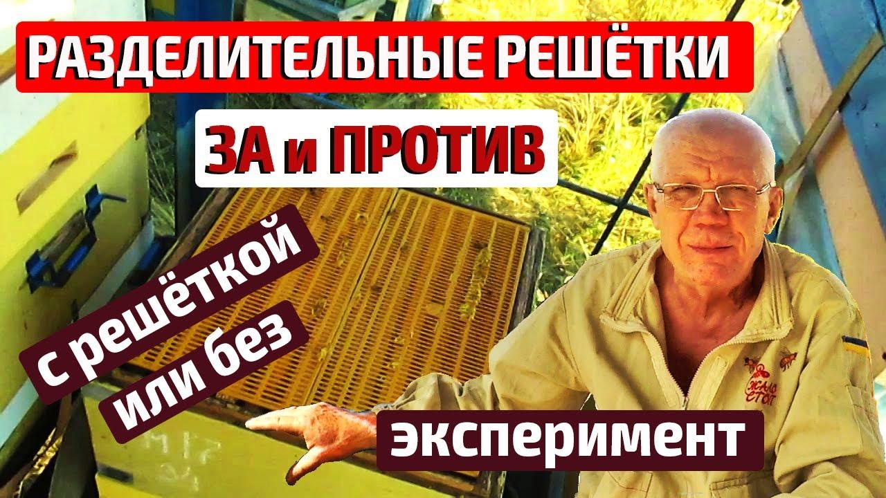 Купить сетку капроновую заградительную у производителя в москве. Сетка спортивная заградительная оптом и в розницу для горных трасс,