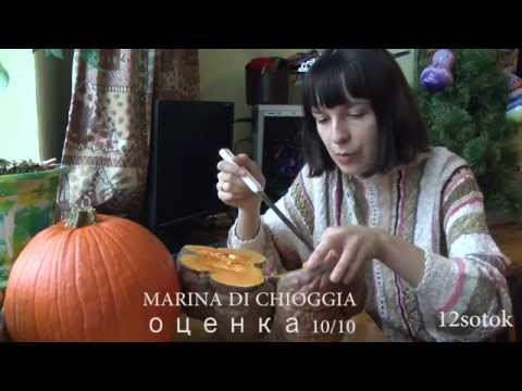 Блюда из тыквы - Все рецепты России
