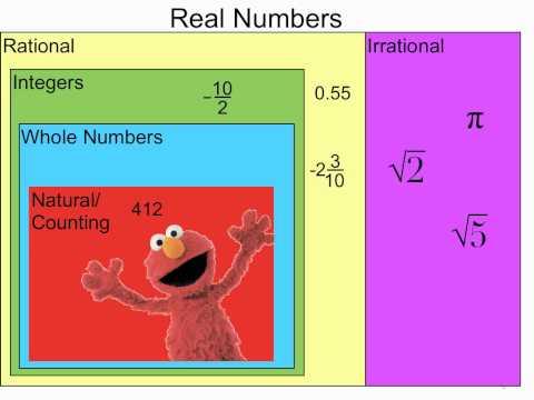 Real Number Diagram