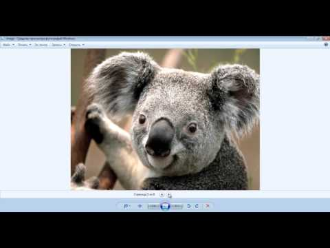 Файл tif чем открыть? tiff формат изображения