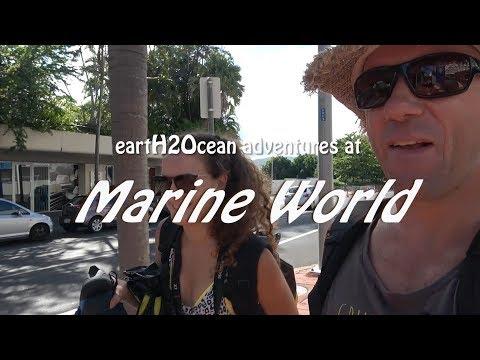 Marine World With Reef Magic