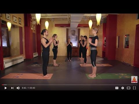Atmananda Yoga - Open Level Class - FREE FULL ONLINE - 60min class