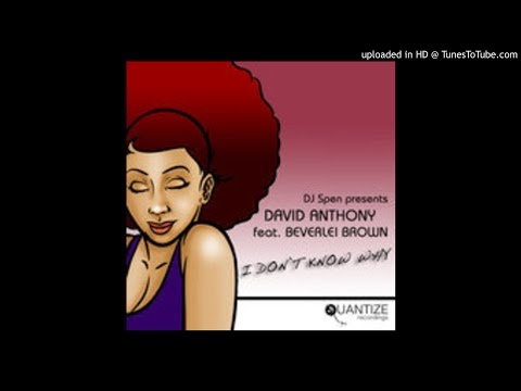 David Anthony feat. Beverlie Brown - I Don't Know (Kemet Soul Mirimba Mix) [Tech House]