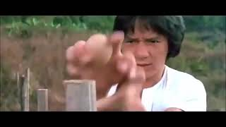 Jackie Chan Kung Fu Snake Fist Training Master