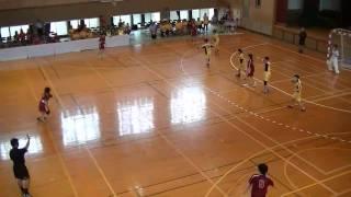 昭和学院×宮崎学園3 平成25年度高校総体ハンドボール