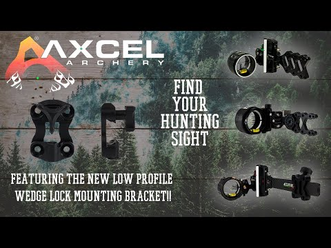 Which Hunting Sight Is Best For You?