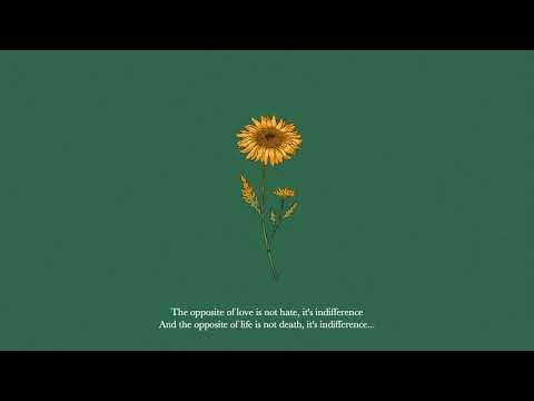 "Lofi Hip-Hop Type Beat ""Sunflower"""
