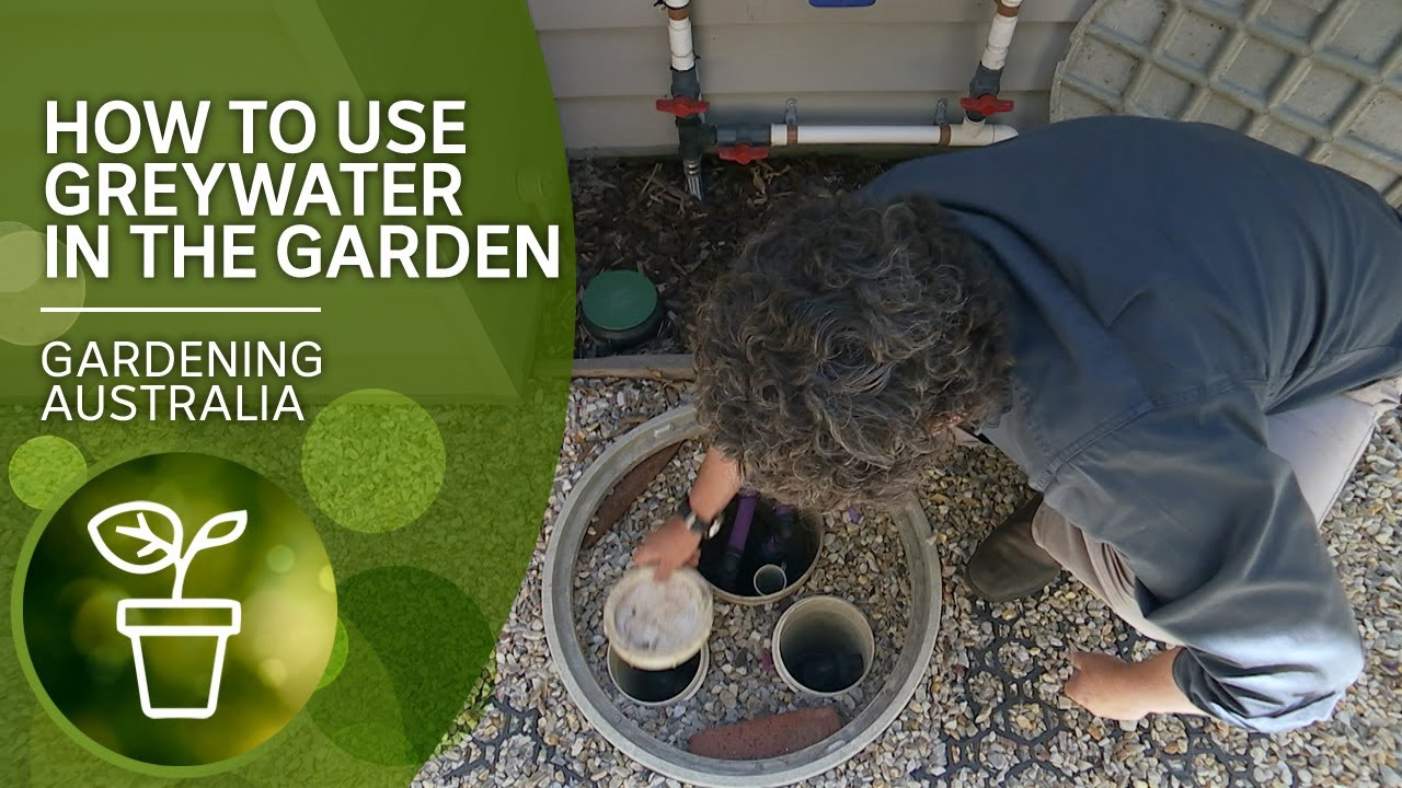How to use greywater in the garden | DIY Garden Projects | Gardening Australia