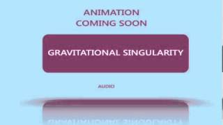 Gravitational Singularity