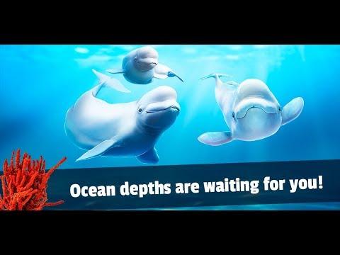 Beluga Whale Simulator - Underwater Life 3D Gameplay Video Android/iOS