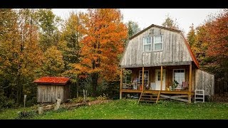 Off-grid Cabin - Hanging Crosscut Saws, Painted The Outhouse & Continuing Squirrel Battles 10-13-13