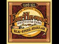 Ernie Ball 2045 Earthwood 80/20 Bronze Silk and Steel Soft Acoustic Guitar Strings Review
