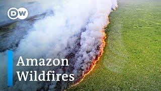 Bolsonaro blames Amazon rainforest wildfires on green groups | DW News
