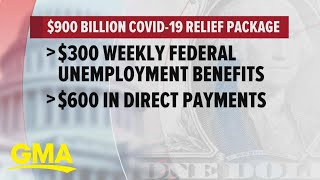 Congress finally reaches agreement on covid stimulus package | gma