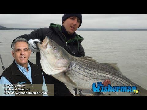 May 5, 2016 Long Island Metro Fishing Report with Fred Golofaro