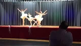 Jenkins School of Dance Ballet Night 1