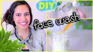 BEST Cleanser for Dry Skin, Oily Skin, Acne Prone Skin DIY FACE CLEANSER | Himani Wright