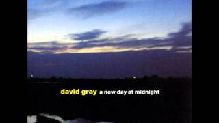 dead in the water - david gray
