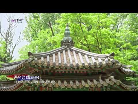 뷰티풀 코리아 - 자연이 품은 조선의 궁궐, 창덕궁_#001
